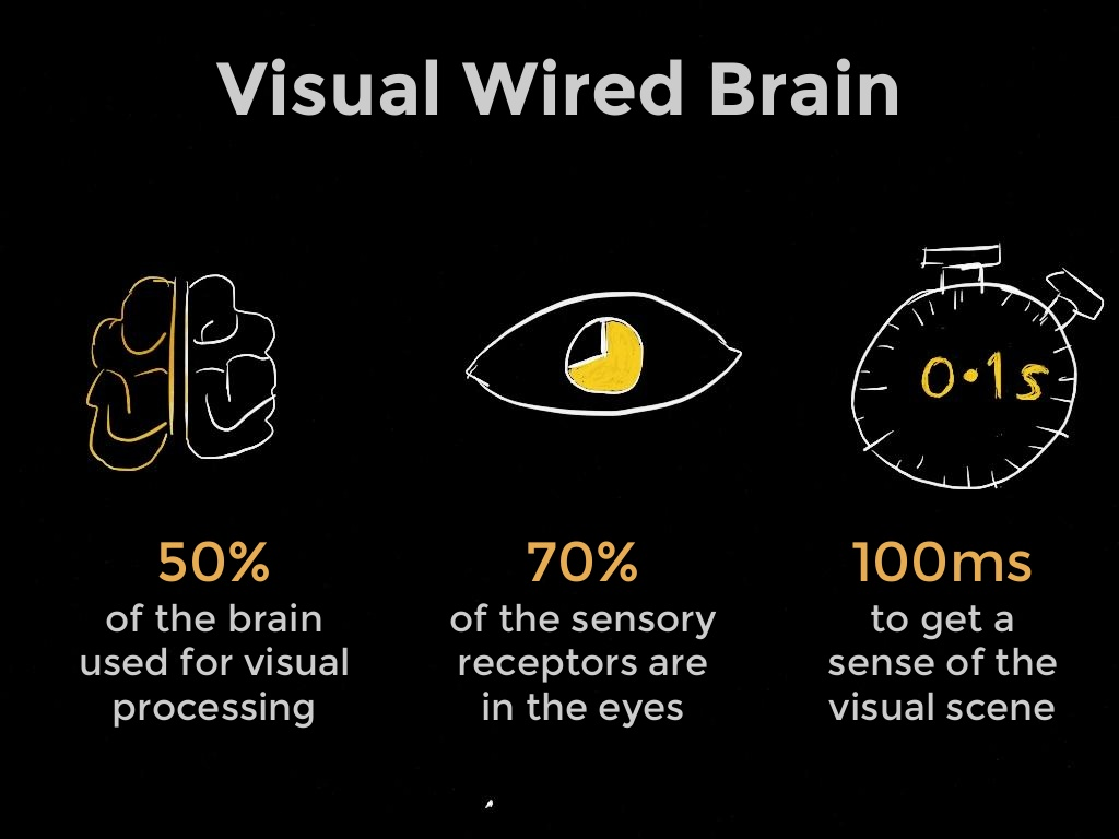 visual brain