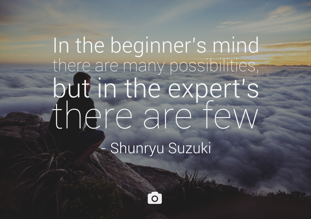 beginner's mind quote